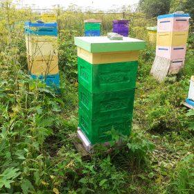 Пчеловодный сезон 2020. Часть II